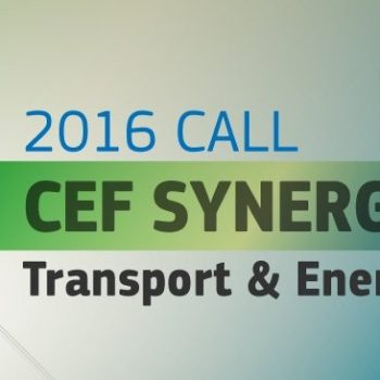 CEFSynergyCall(2)